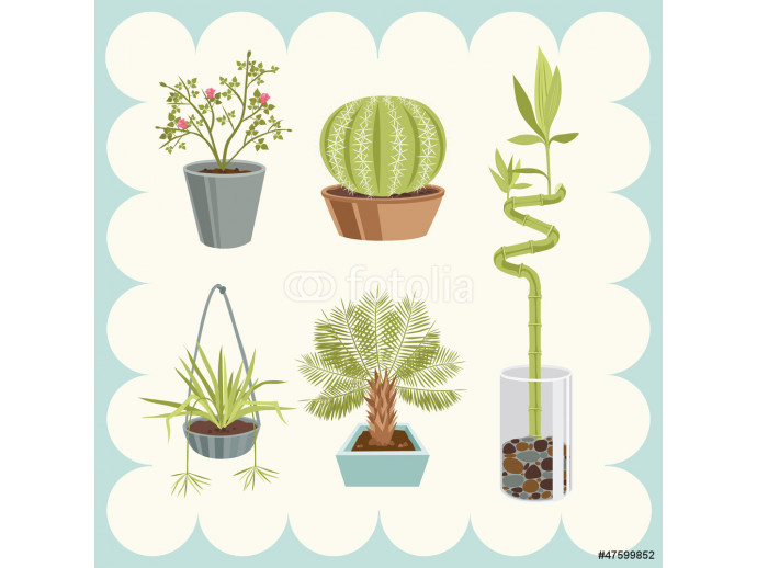 Illustration of Home Plants 64238