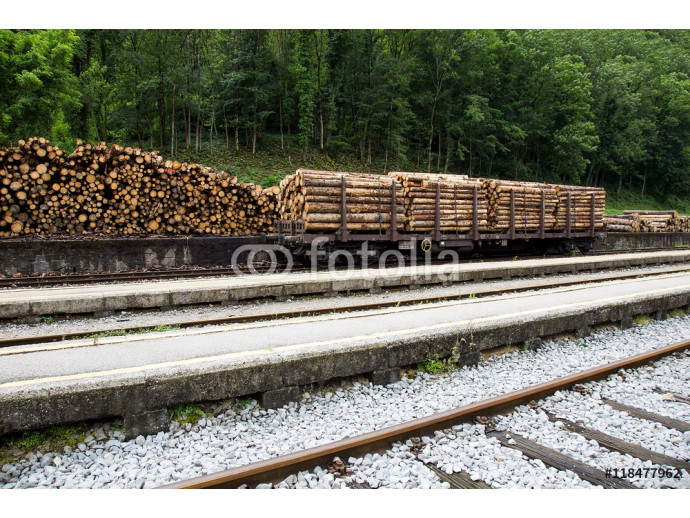 Logs for Transportation on Railway Station 64238