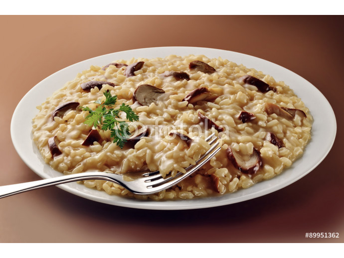 Dish of Mushroom Risotto with Fork 64238