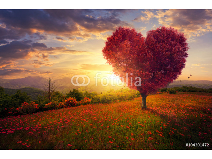 Red heart shaped tree 64238