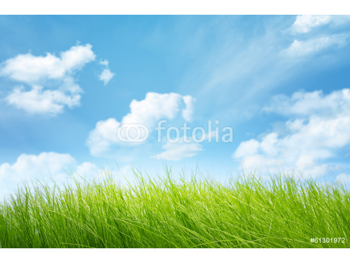 Natural backgrounds 64238