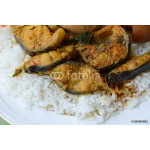 spicy curry catfish on plain rice 64238