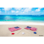 American flags on the beach 64238