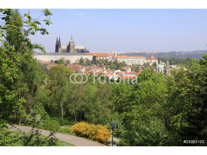 Prague's gothic Castle with flowering trees and green grass 64238
