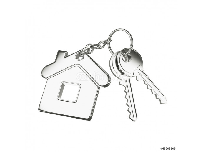 key with key chain 64238