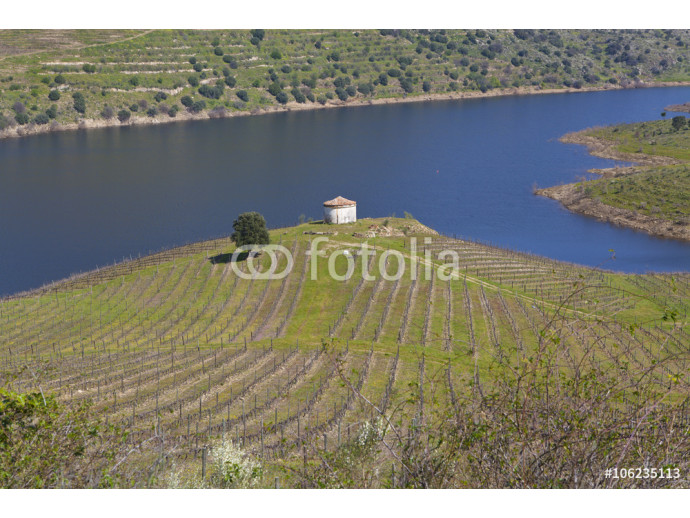 Sabor River in Douro Valley 64238