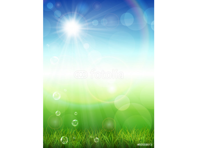 Summer background with green grass 64238