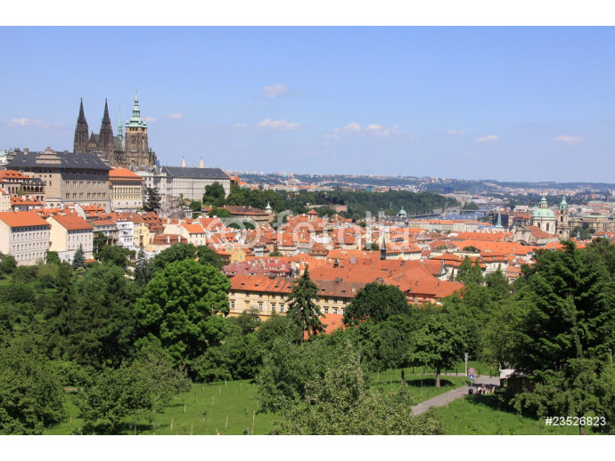 Fototapeta Prague's gothic Castle with flowering trees and green grass 64238