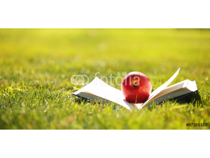 Back to School. Open Book and Apple on Green Grass. 64238