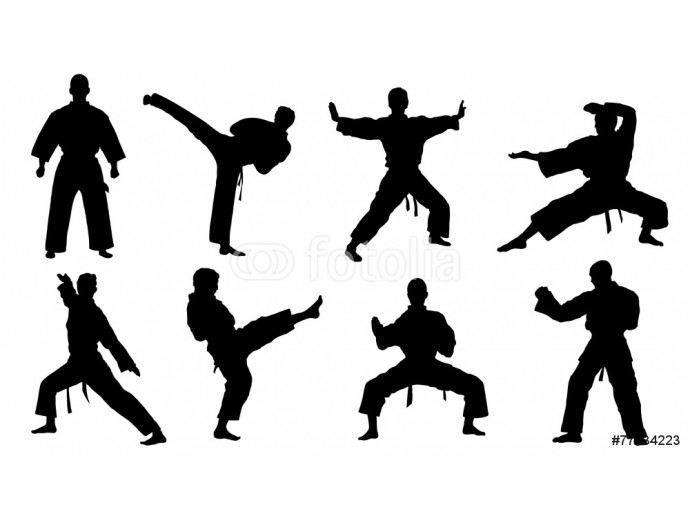 Fotomurale karate silhouettes 64238
