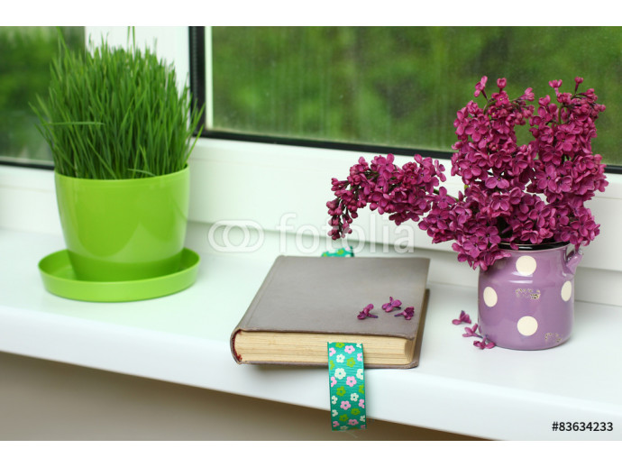 lilacs in a vase and an open book on the window 64238