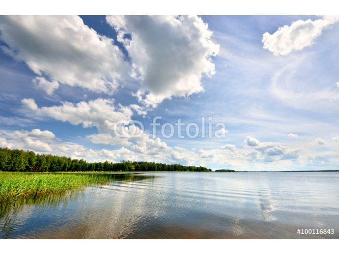 Fotomurale lake in the forest with reflection 64238