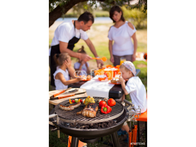 Family on vacation having barbecue 64238