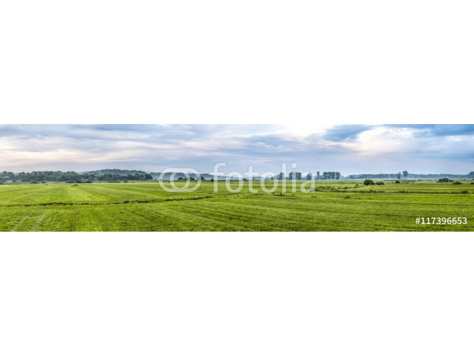 rural landscape in rain  with green meadow 64238