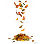 Maple autumn falling leaves, isolated on white background. 64238