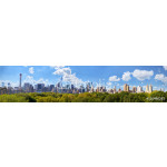 Manhattan skyline panorama with Central Park in New York City 64238