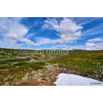 Norwegian mountain plain landscape with small areas of summer snow in Telemark, Norway 64238