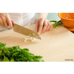 Female Hand Chopping Green Onions 64238