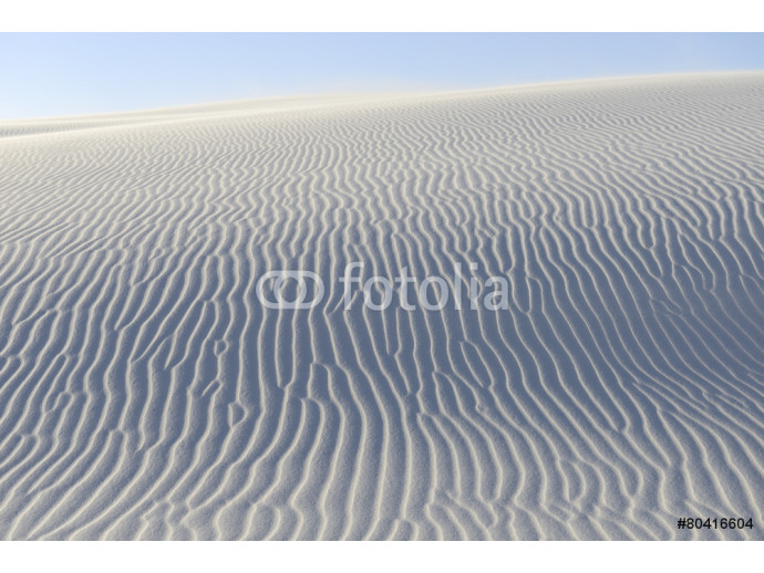 Rippled Patterns in Sand Dunes 64238