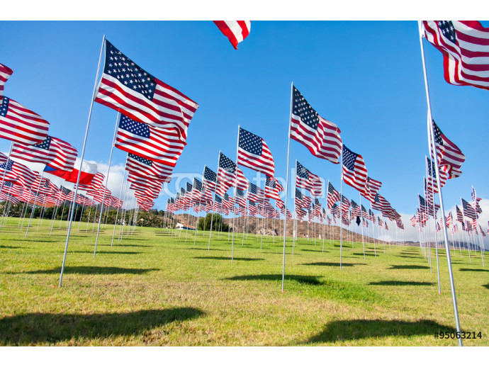 American flags displaying on Memorial Day 64238