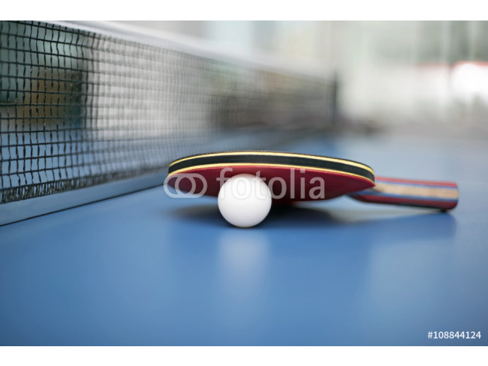 Table tennis ball and bat 64238