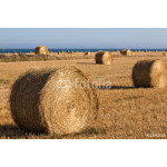 Hay  rolls close up on  wheat field. 64238