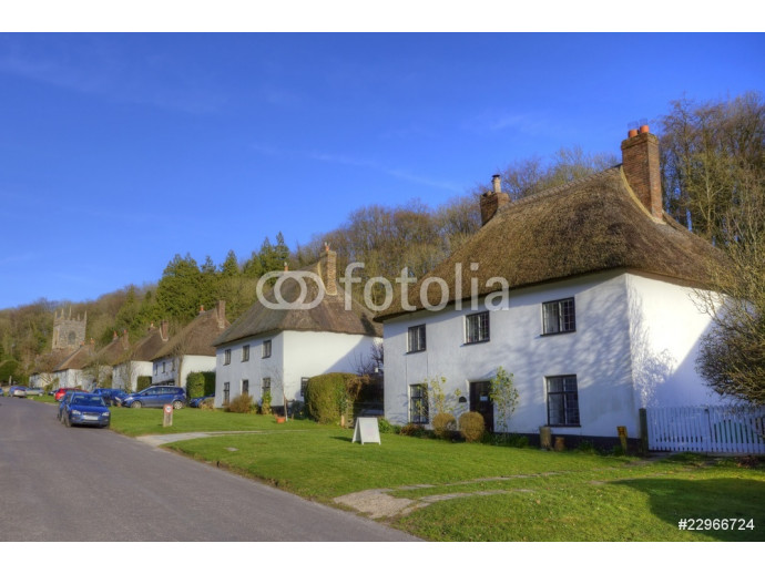 Thatched roof houses in English village 64238