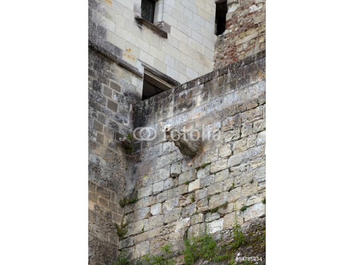 Amboise castle .Valley of the river Loire. France 64238