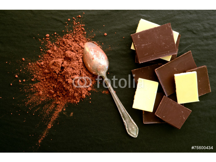 Fototapeta Chocolate bars with heap of cacao powder 64238