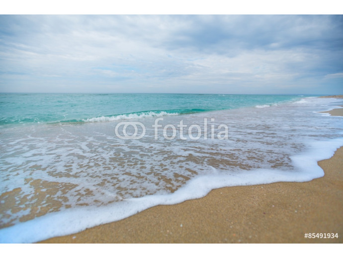 Beach, Florida, Wave. 64238