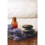 Lavender, stones and oil 64238