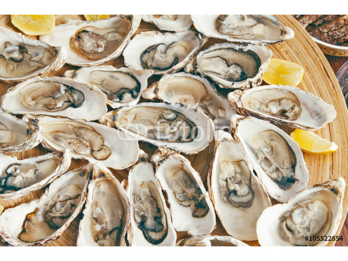 Plate with oysters 64238