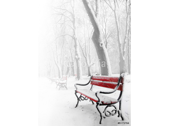 Wallpaper Red benches in the fog in winter 64238