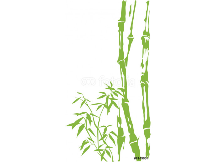 Bamboo stalks and leaves 64238