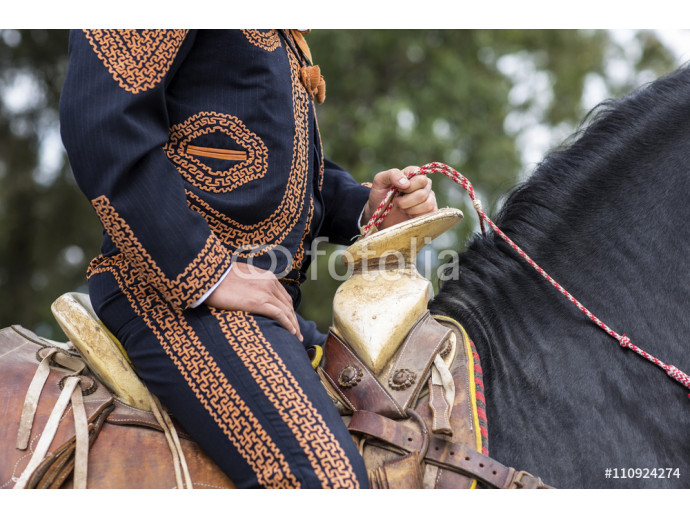 Wallpaper Mexican charro with traditional dress riding 64238