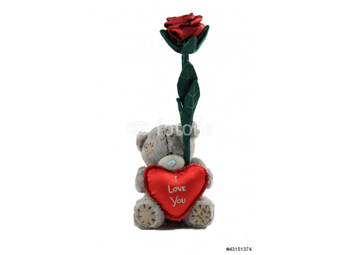 Teddy Bear holding a heart with I love you message and a rose 64238