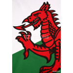 Detail on the flag of Wales - United Kingdom 64238