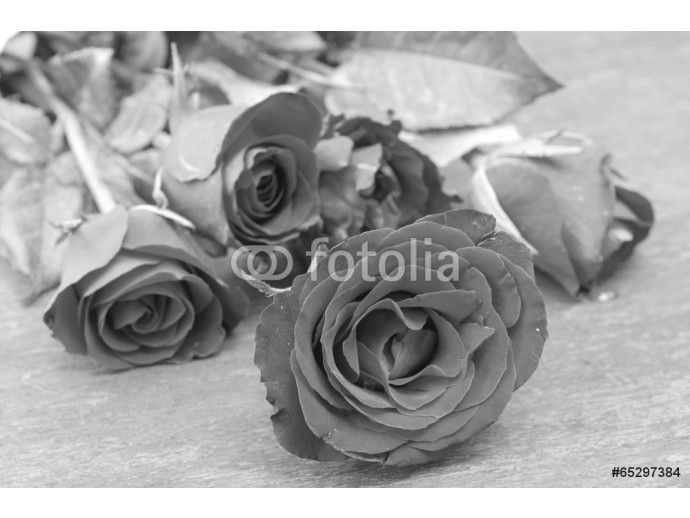 Pictures of roses and gifts for Valentine's Day. 64238