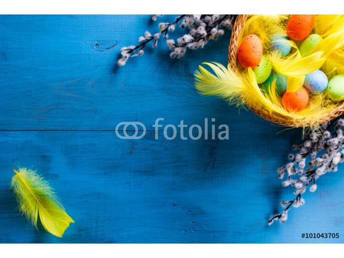 Easter Basket with easter eggs and yellow feathers and catkins on blue wooden background. 64238