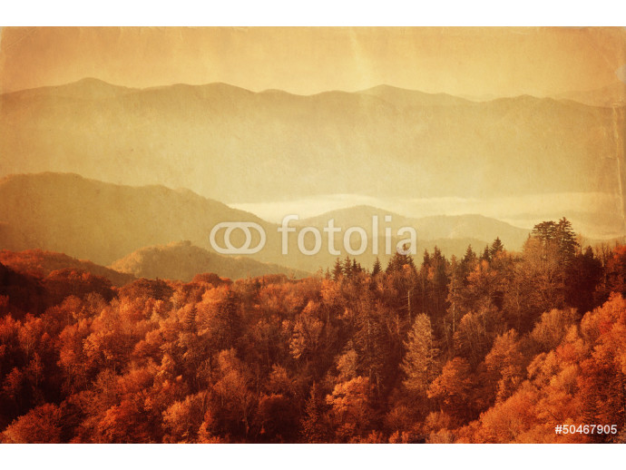 Old style image of Great Smoky Mountains National Park 64238