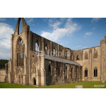 Tintern abbey cathedral ruins. Abbey was established at 1131. 64238