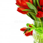red tulips 64238