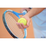 Closeup of hands holding tennis racket and ball, poised to serve 64238