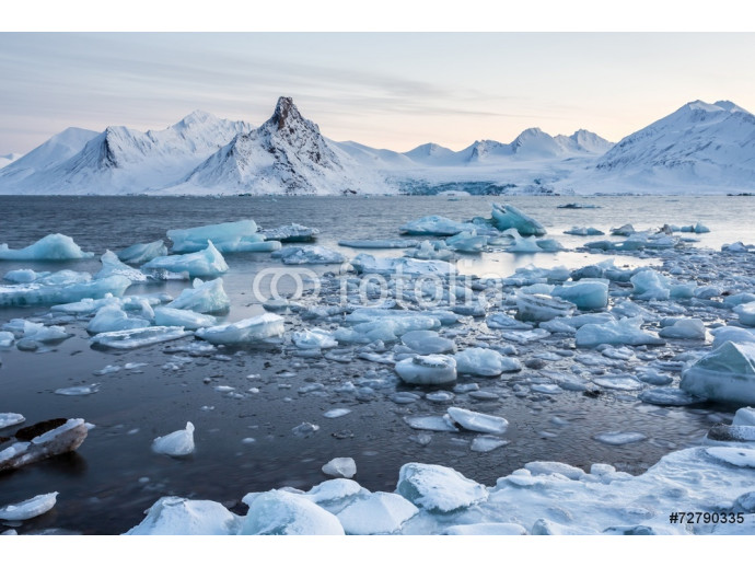 Extraordinary, icy world of the Arctic fjord 64238