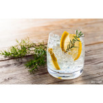 Gin with lemon and ice 64238