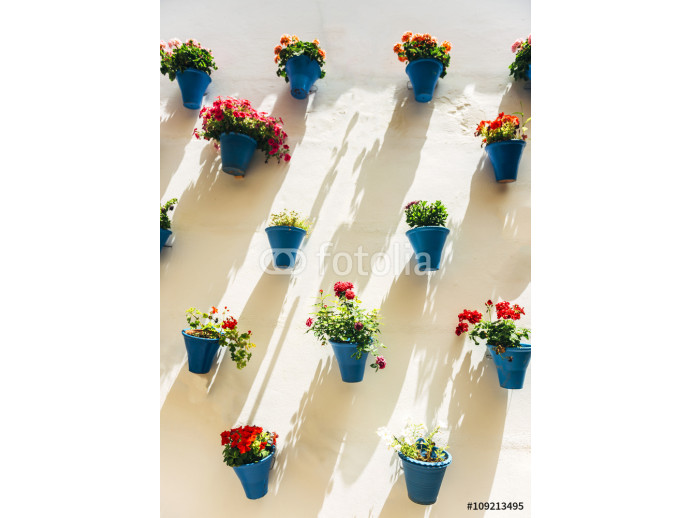 Flowerpots and colorful flower on a white wall, in Cordoba, Spai 64238