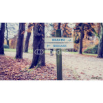Rustic wooden sign in an autumn park with the words Health - Dis 64238