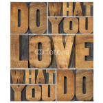 do what you love 64238