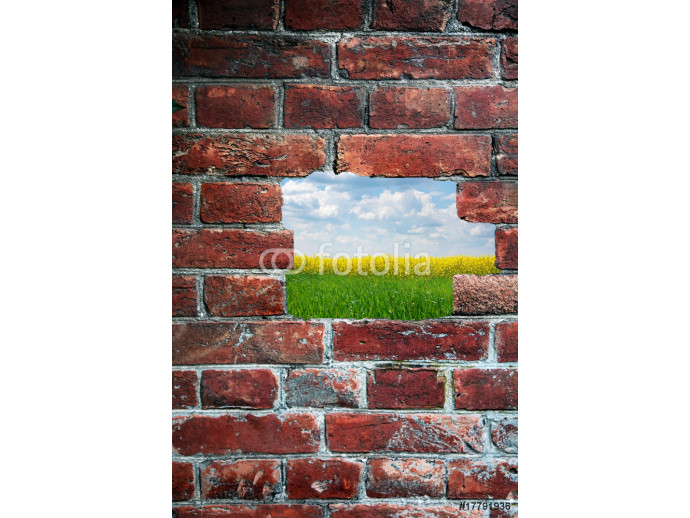 Abstract wall and field inside 64238