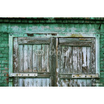 A wooden vintage scaled door at green bricks wall background. 64238